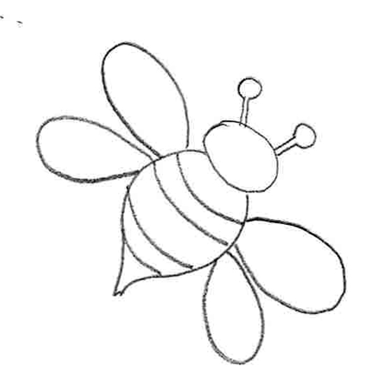 line drawing bee