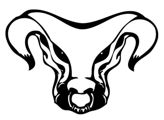 bull tattoo drawing